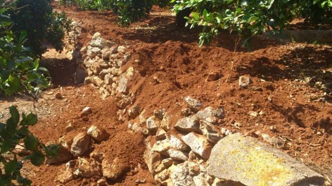 Grandes hoyos, raíces al descubierto y muros de piedra destrozados.