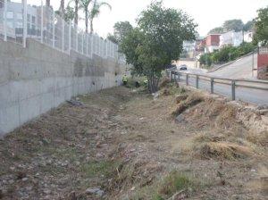 Trabajos de limpieza en uno de los barrancos de Alzira (LP)